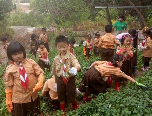 Boy Scout (3)