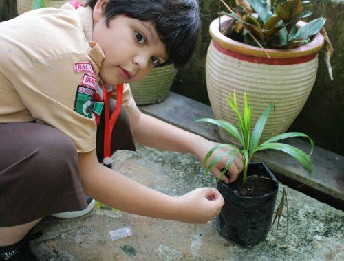 Boy Scout (8)